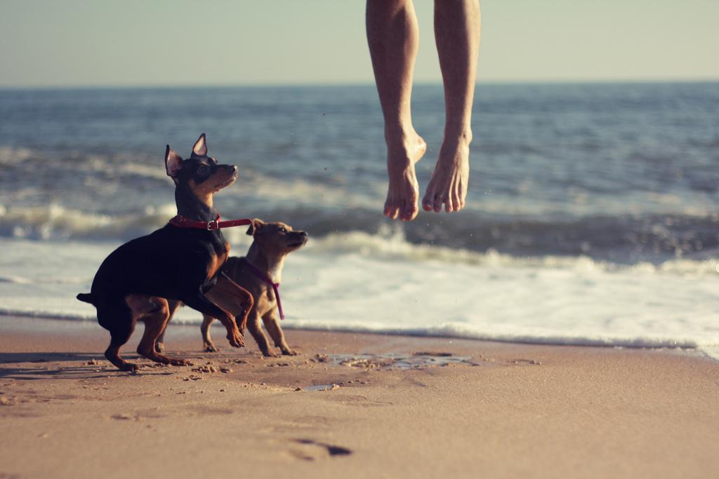 5 Gründe für Barfußschuhe – gesund Gehen und ein neues Laufgefühl erleben