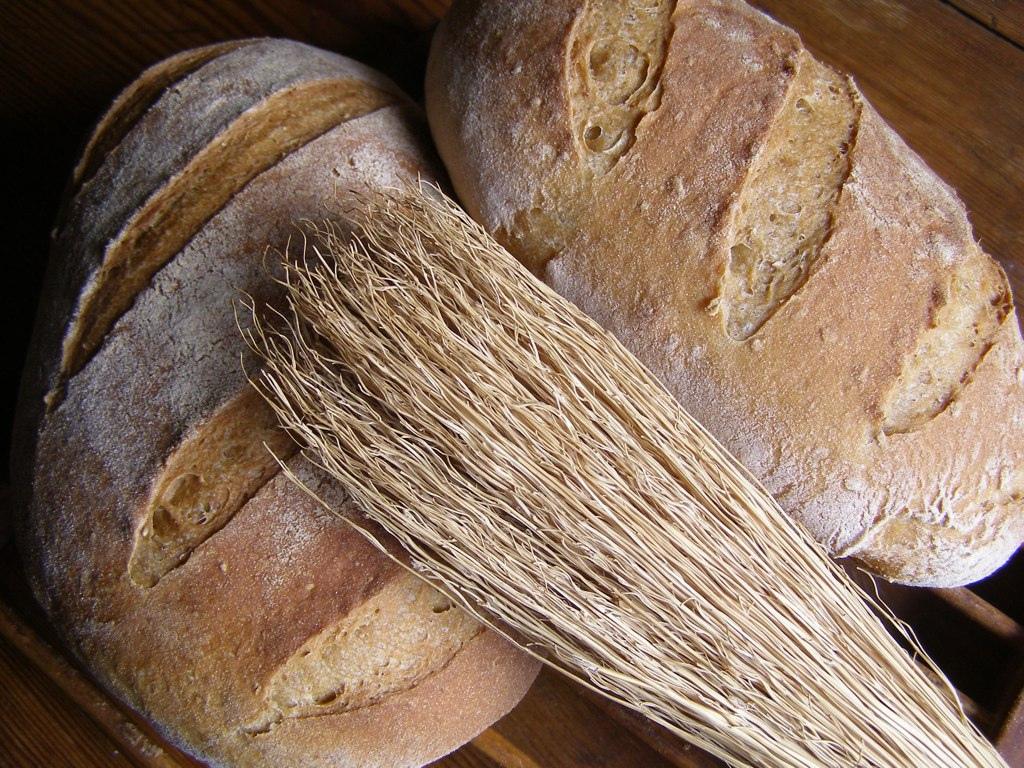 1 Jahr ohne glutenhaltige Getreideprodukte – mein persönliches Fazit